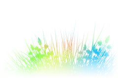 Rainbow grass Royalty Free Stock Image