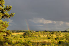 Rainbow in the gray sky after a thunderstorm at sunset. View of the field, the river Stock Photos