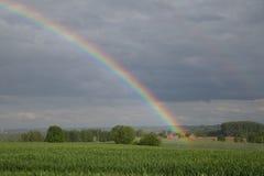 Rainbow green field Stock Image