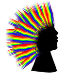 Rainbow hair woman. Silhouette of a woman with the rainbow hair Stock Images