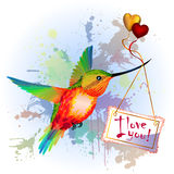 Rainbow humming-bird with Valentines Card Stock Photo