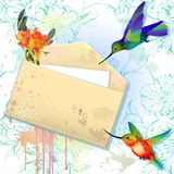 Vector card with grunge envelope and hummingbirds Stock Images