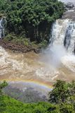 Rainbow at Iguazu Falls viewed from Brazil Stock Photos