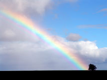 Rainbow In Nature Royalty Free Stock Image