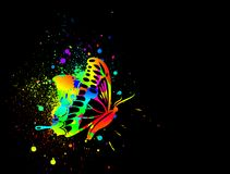 Rainbow ink butterfly on black background. Vector Royalty Free Stock Image