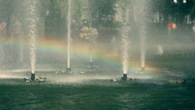 The rainbow inside the splashes of park fountane stock video