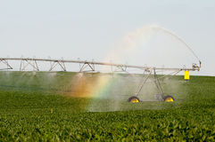 Rainbow irrigation. A rainbow in the mist of an irrigation system oer a soybean field Royalty Free Stock Image