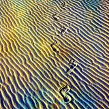 Rainbow Journey. Footprints in the sand. Photo based illustration royalty free stock photos
