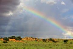 A rainbow at kgalagadi Stock Image