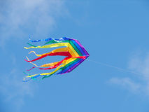 Rainbow kite. The rainbow kite flies in the blue sky royalty free stock photography
