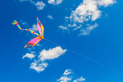 Rainbow kite flies in the blue sky among the clouds Stock Image