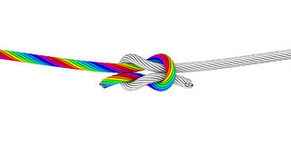 Rainbow Knot_B. Illustration of two ropes tied with a square knot. One rope is rainbow colored, the other is black and white Stock Image