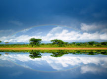Rainbow in the Lake. Rainbow in the sky. Kenya. Africa royalty free stock image