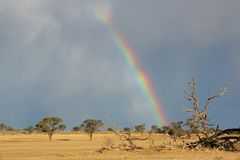 Rainbow landscape. Desert landscape with a colorful rainbow and heavy rain clouds, Kalahari, South Africa stock photo