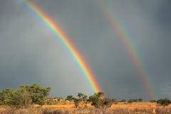Rainbow landscape Stock Images