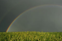 Rainbow landscape summer storm field Stock Photo