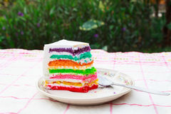 Rainbow layer cake. Close up piece of rainbow layer cake Royalty Free Stock Photo
