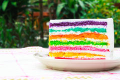 Rainbow layer cake. Close up piece of rainbow layer cake Royalty Free Stock Photography