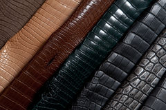 Rainbow of leather Stock Photos