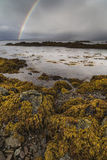 Rainbow on Loch Eishort on the Isle of Skye. Rainbow and seaweed on Loch Eishort on the Isle of Skye in Scotland royalty free stock images