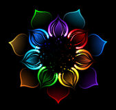 Rainbow lotus. With iridescent petals of a lotus, painted bright sparks on a black background Royalty Free Stock Photo