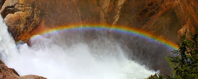 Rainbow at Lower Falls - Yellowstone. Sunlight creates a rainbow in mists of the Lower Falls of the Yellowstone River in Wyoming Stock Images