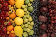Rainbow mixed fruits stock image