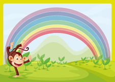Rainbow and monkey playing in nature Royalty Free Stock Images