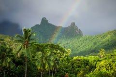 Rainbow on Moorea island jungle and mountains landscape Stock Image