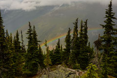 Rainbow in a mountain forest Stock Photography