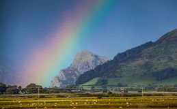 Rainbow mountain landscape Stock Images