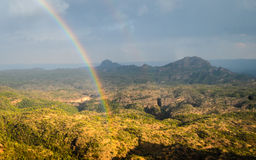 Rainbow, valley and jungle Royalty Free Stock Image