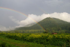 Rainbow in the mountains. After rain Stock Photo