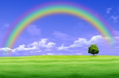 Free Rainbow Over A Green Glade Stock Image - 18718581