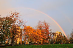 Rainbow over autumn color tree and buildings Stock Photography