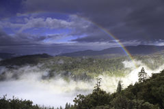 Rainbow over California forest Stock Image