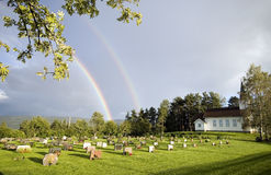 Rainbow over church,Norway stock photography