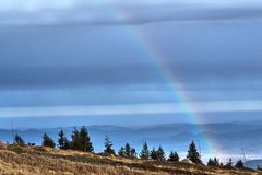 Rainbow over the coniferous forest. In the Giant Mountains in Poland stock images