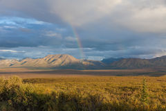 Rainbow Over Denali National Park Landscape Stock Photography