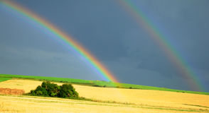 Rainbow over the field. Two rainbows over corn fields Stock Photo