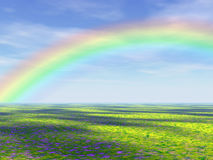 Rainbow Over Field. Rainbow against pastoral blue sky over a field of simulated wildflowers. A 3D computer generated image Royalty Free Stock Photos