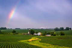 Rainbow Over Field Royalty Free Stock Photos
