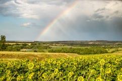Rainbow Stock Image