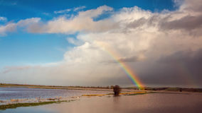 Rainbow Over Flooded Land After Storm stock photos