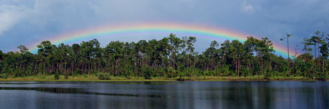 Rainbow Over a Florida Lake Stock Image