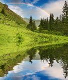 Rainbow over forest stock photo