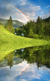 Rainbow over forest Royalty Free Stock Images
