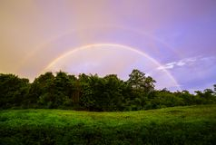Rainbow Over Forest Stock Photography
