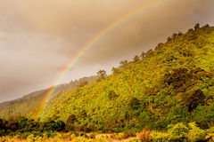 Rainbow over forest foothills, West Coast, NZ Royalty Free Stock Images