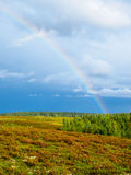 Rainbow over the forested landscape under stormy sky Royalty Free Stock Images